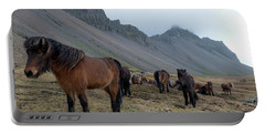 Portable Battery Charger featuring the photograph Horses Near Vestrahorn Mountain, Iceland by Dubi Roman