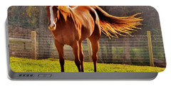 Horse's Tail Portable Battery Charger