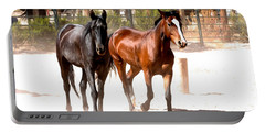 Horses Unlimited_6a Portable Battery Charger