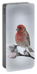 House Finch And Spring Snowfall - D010346 Portable Battery Charger
