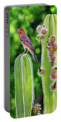 House Finch On Blooming Cactus Portable Battery Charger