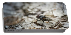 Portable Battery Charger featuring the photograph House Fly by Chevy Fleet