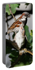 Portable Battery Charger featuring the photograph House Sparrow - Feed Me Daddy by Sue Harper