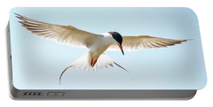 Hovering Tern Portable Battery Charger