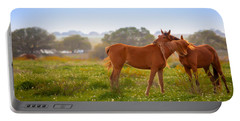Portable Battery Charger featuring the photograph Hug It Out by Melinda Ledsome