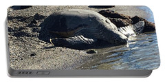 Huge Sea Turtle Portable Battery Charger by Karen Nicholson