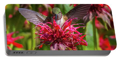 Hummingbird At Eagles Nest Portable Battery Charger