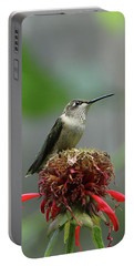 Humming Bird Atop Bee Balm Portable Battery Charger