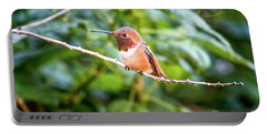 Humming Bird On Stick Portable Battery Charger by Stephanie Hayes