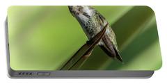 Hummingbird 7484-101017-2cr Portable Battery Charger