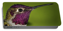 Hummingbird Head Shot With Raindrops Portable Battery Charger by William Lee