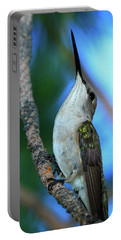 Hummingbird II Portable Battery Charger