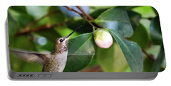 Hummingbird In Flight Portable Battery Charger by Suzanne Luft
