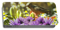 Portable Battery Charger featuring the photograph Hummingbird In The Spring Rain by Diane Schuster