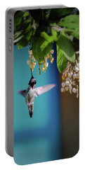 Hummingbird Moment Portable Battery Charger
