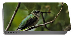 Hummingbird On Branch Portable Battery Charger