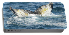 Portable Battery Charger featuring the photograph Humpback Whale In Elephant Bay   by Harvey Barrison