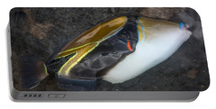 Portable Battery Charger featuring the photograph Humuhumunukunukuapua'a by Colleen Coccia