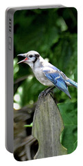 Portable Battery Charger featuring the photograph Hungry Bird by Carol Bradley