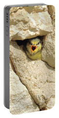Hungry Chick Portable Battery Charger