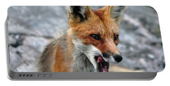 Portable Battery Charger featuring the photograph Hungry Red Fox Portrait by Debbie Oppermann