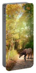 Portable Battery Charger featuring the photograph Hunters Dream by Mary Timman