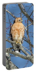 Portable Battery Charger featuring the photograph Hunting by Bill Wakeley