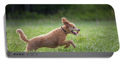 Hunting Dog Portable Battery Charger