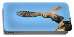 Hunting Kestrel Portable Battery Charger by Shoal Hollingsworth