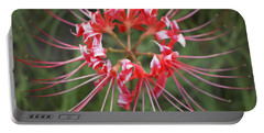 Hurricane Lily Portable Battery Charger