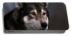 Husky Portable Battery Charger