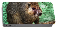 Hutia, Tree Rat Portable Battery Charger