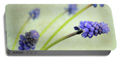 Hyacinth Grape Portable Battery Charger by Lyn Randle