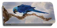 Portable Battery Charger featuring the photograph Hyacinth Macaw by Wade Aiken