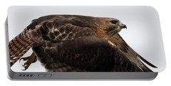 Hybrid Hawk Flyby  Portable Battery Charger