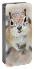 Portable Battery Charger featuring the photograph Hypno Squirrel by Chris Scroggins