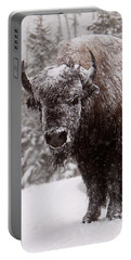 Ice Cold Winter Buffalo Portable Battery Charger