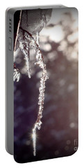 Ice In The Sun Portable Battery Charger