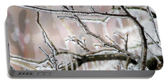 Ice Storm Ice Portable Battery Charger