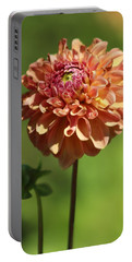 Iced Tea Dahlia In Marzipan And Milano Tones Portable Battery Charger