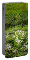 Icelandic Daisies Portable Battery Charger