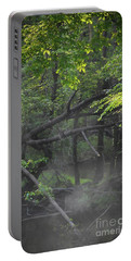 Portable Battery Charger featuring the photograph If A Tree Falls In The Woods by Skip Willits