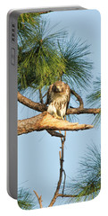 If Looks Could Kill - Hawk Portable Battery Charger