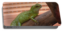 Iguana Balancing On A Tree Branch Portable Battery Charger by DejaVu Designs