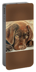 I'm Sorry - Chocolate Lab Puppy Portable Battery Charger