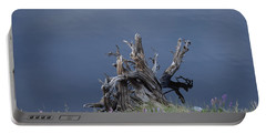 Stump Chambers Lake Hwy 14 Co Portable Battery Charger