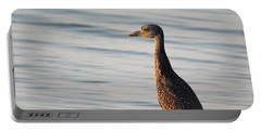 Immature Black-crowned Night-heron Mt Sinai New York Portable Battery Charger by Bob Savage
