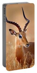 Impala Male Portrait Portable Battery Charger