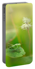 Impression With Grasshopper Portable Battery Charger
