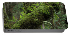 Portable Battery Charger featuring the photograph In The Cool Of The Forest by Mike Eingle